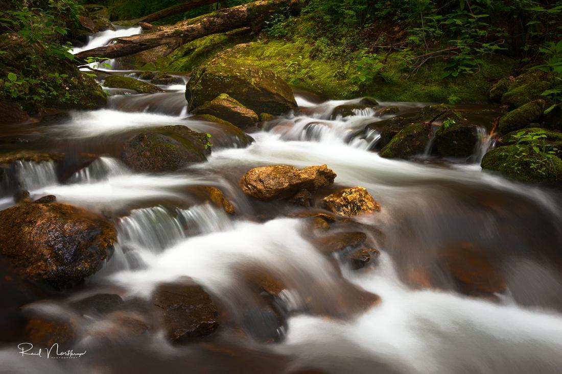 Near Walker Falls II