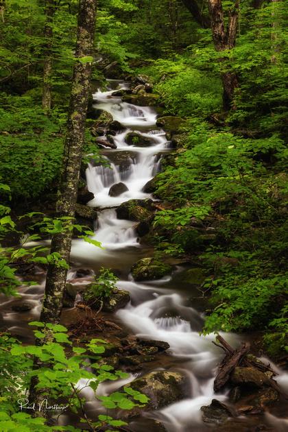 Near Walker Falls