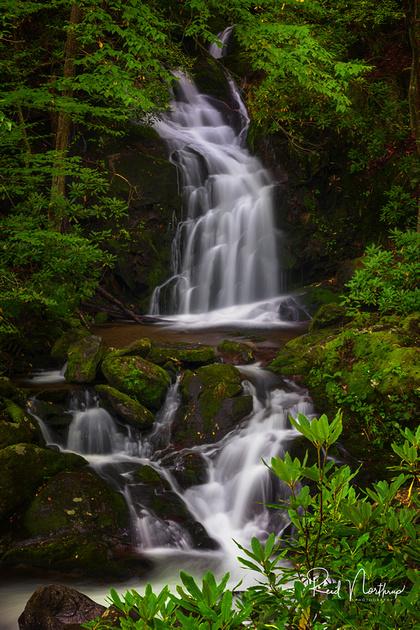 Mouse Creek Falls - September 2017