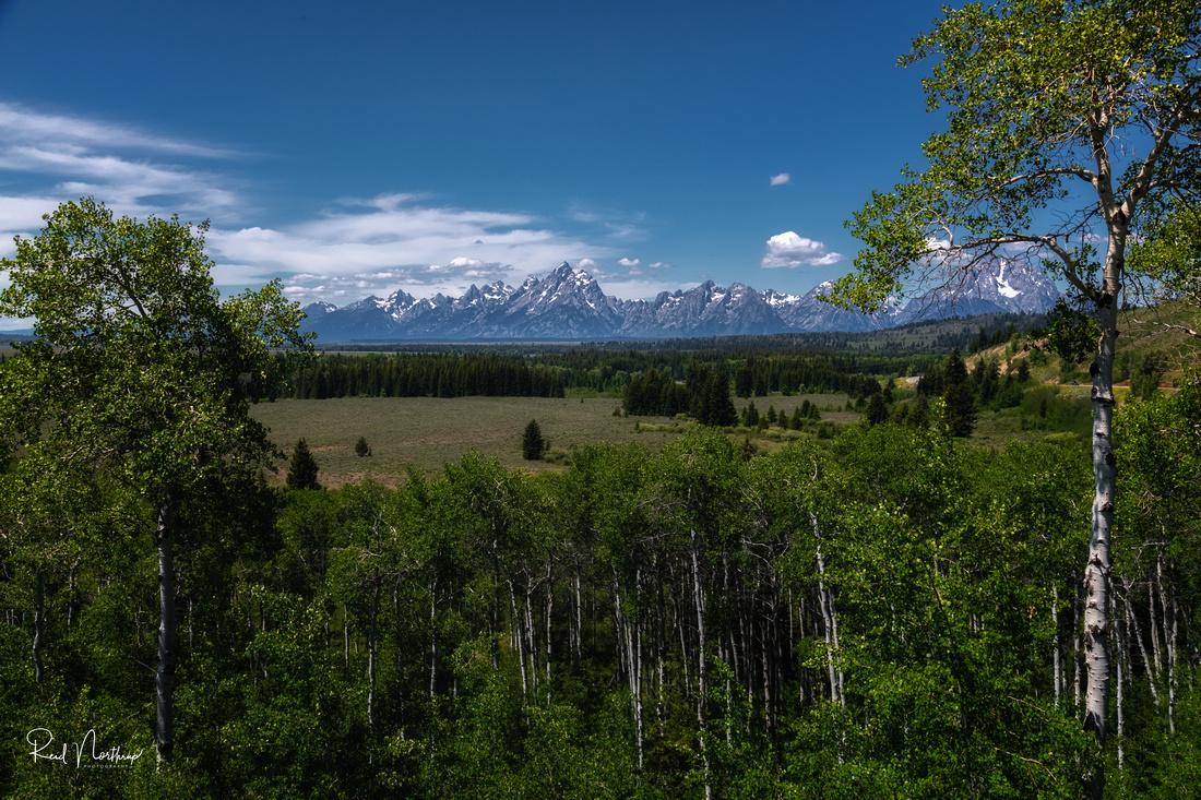 Teton Range Distant View - July 2021