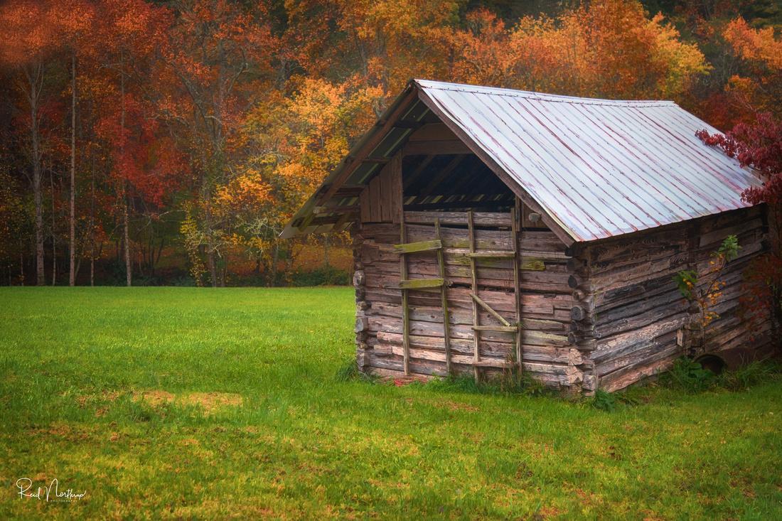Rural Georgia Shed Oct. 2018