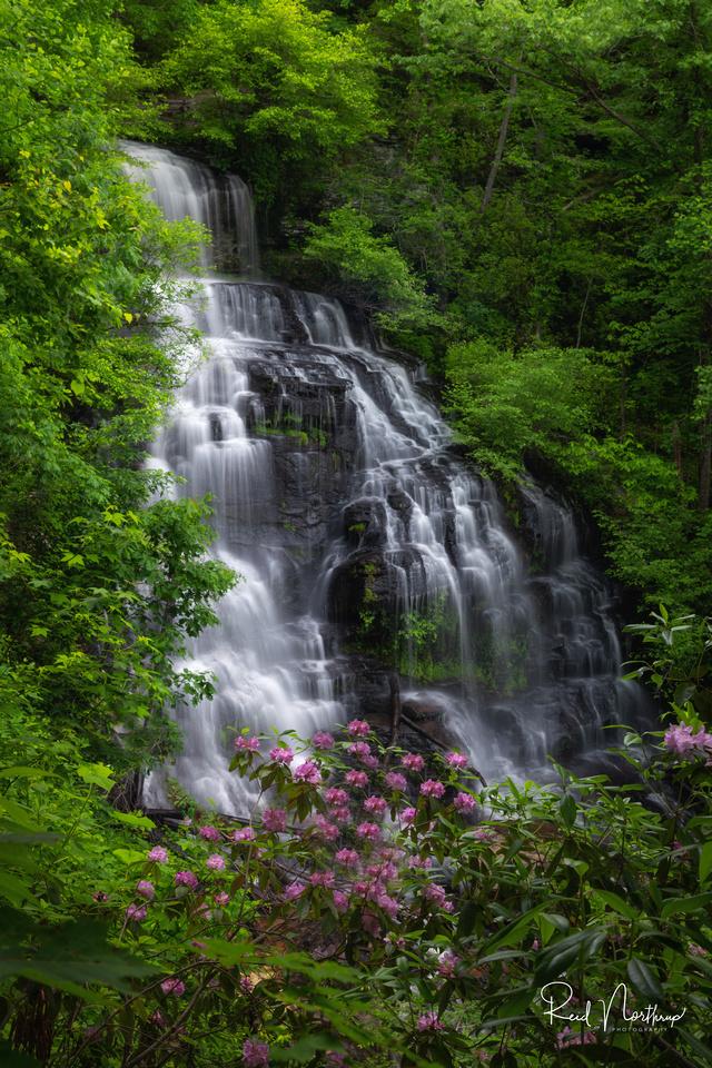 Isaqueena Falls - May 2019