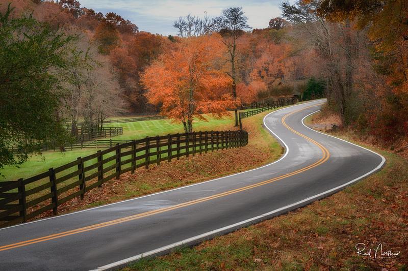 Rural Georgia Oct. 2019