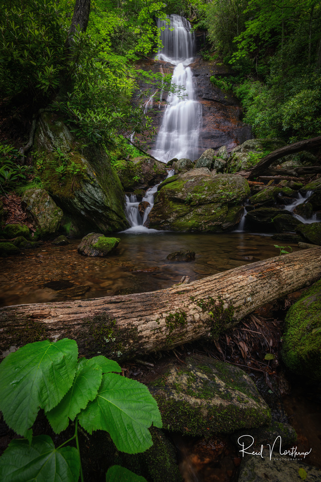 Dill Falls - June 2020