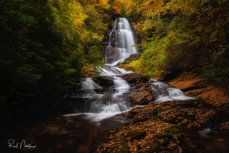 Upper Sols Creek Falls - October 2020